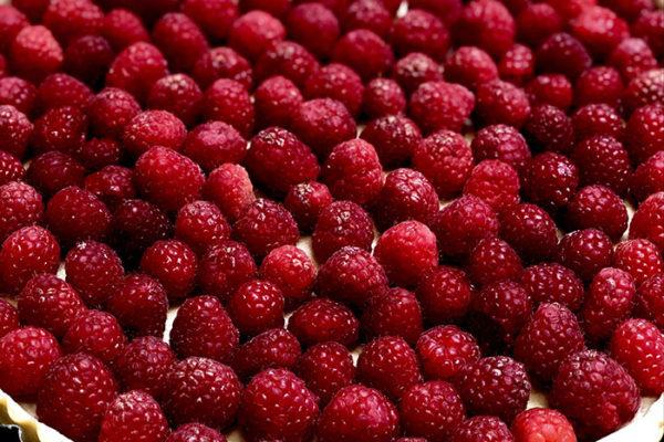Manos Restaurant HP 2 - Raspberry Pie